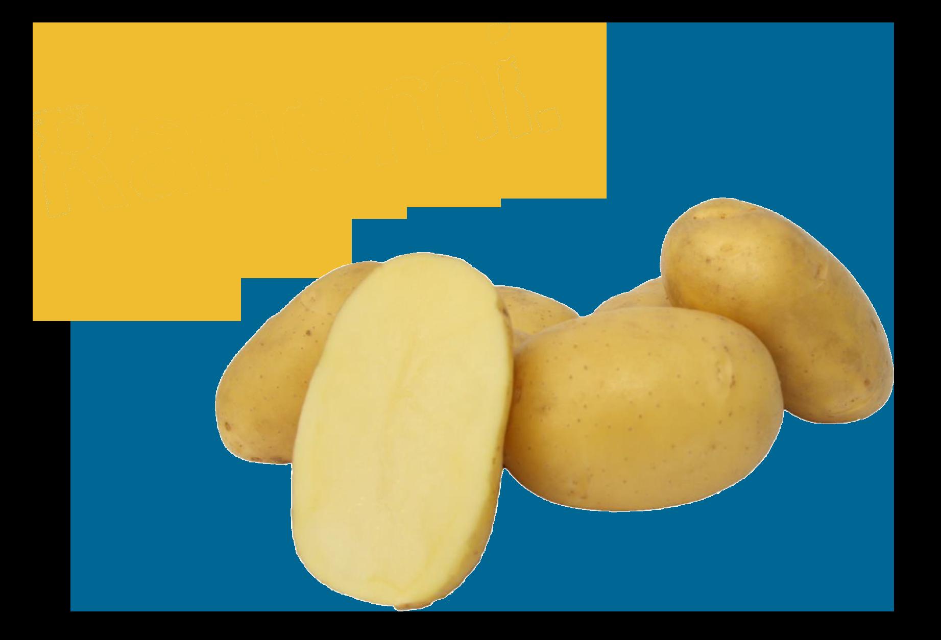 Ranomi